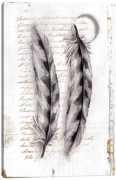 Vintage Feathers I  Canvas Art Print