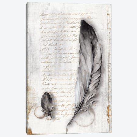 Vintage Feathers II  Canvas Print #EWA143} by Eva Watts Canvas Artwork