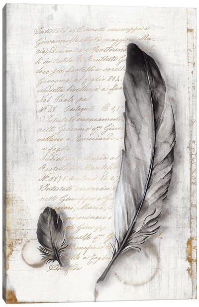Vintage Feathers II  Canvas Art Print