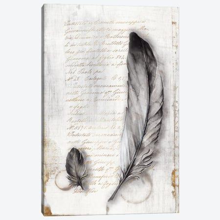 Vintage Feathers II  Canvas Print #EWA143} by Eva Watts Canvas Artwork