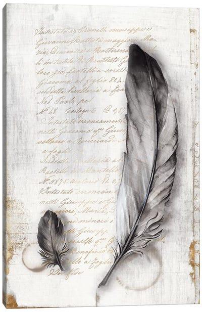 Vintage Feathers II  Canvas Art Print