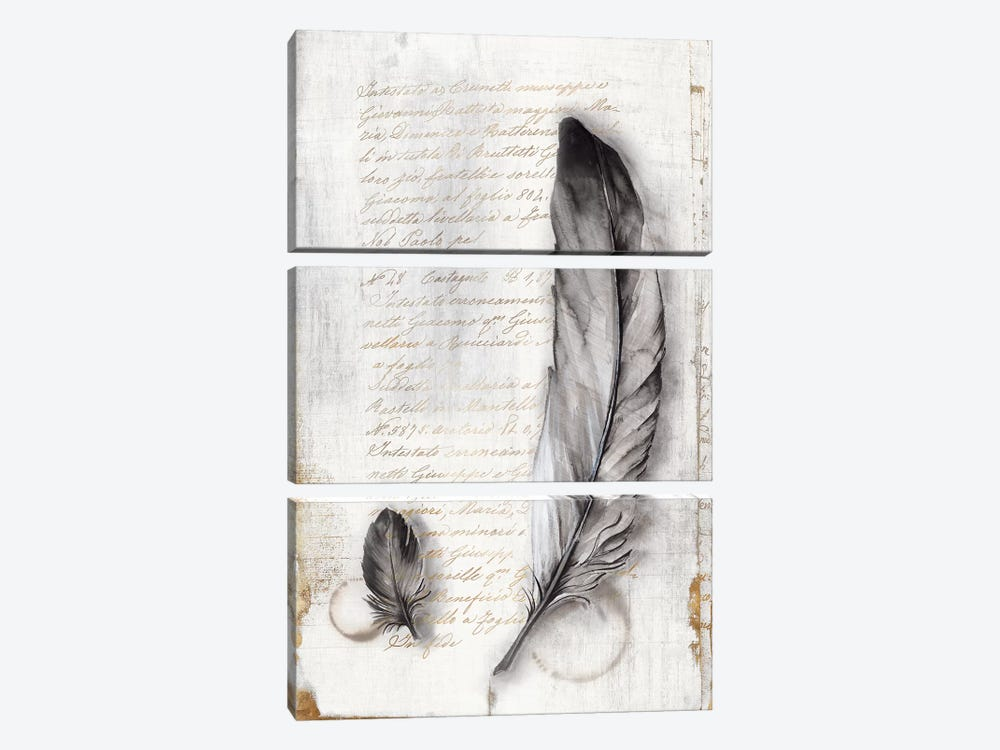 Vintage Feathers II  by Eva Watts 3-piece Art Print