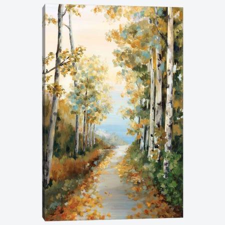 Path in the Forest  Canvas Print #EWA150} by Eva Watts Art Print