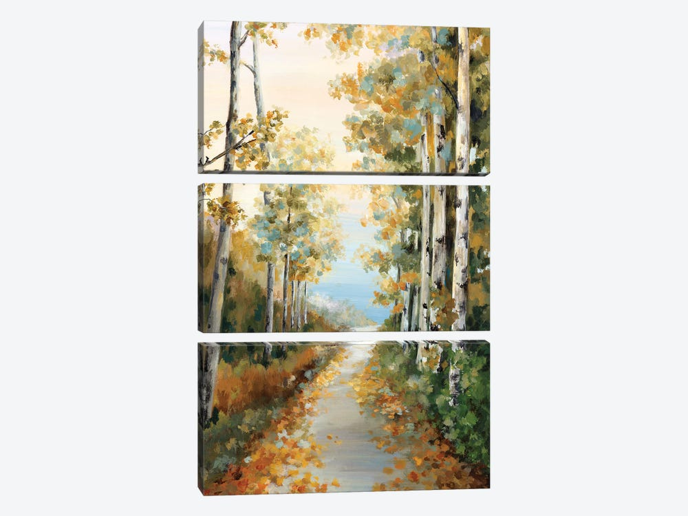 Path in the Forest  by Eva Watts 3-piece Art Print