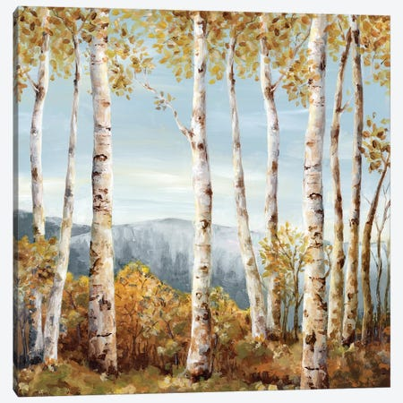 Up Hill  3-Piece Canvas #EWA151} by Eva Watts Art Print