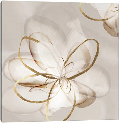Transparent Beauty II  Canvas Art Print
