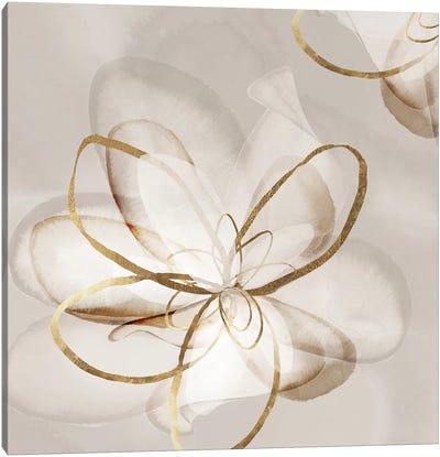 Transparent Beauty II  Canvas Art Print