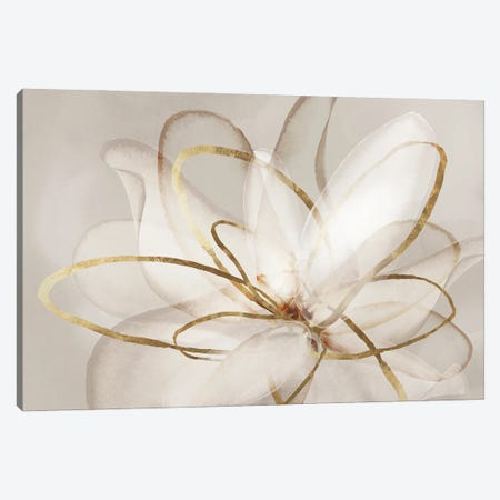 Transparent Beauty III  Canvas Print #EWA163} by Eva Watts Canvas Wall Art