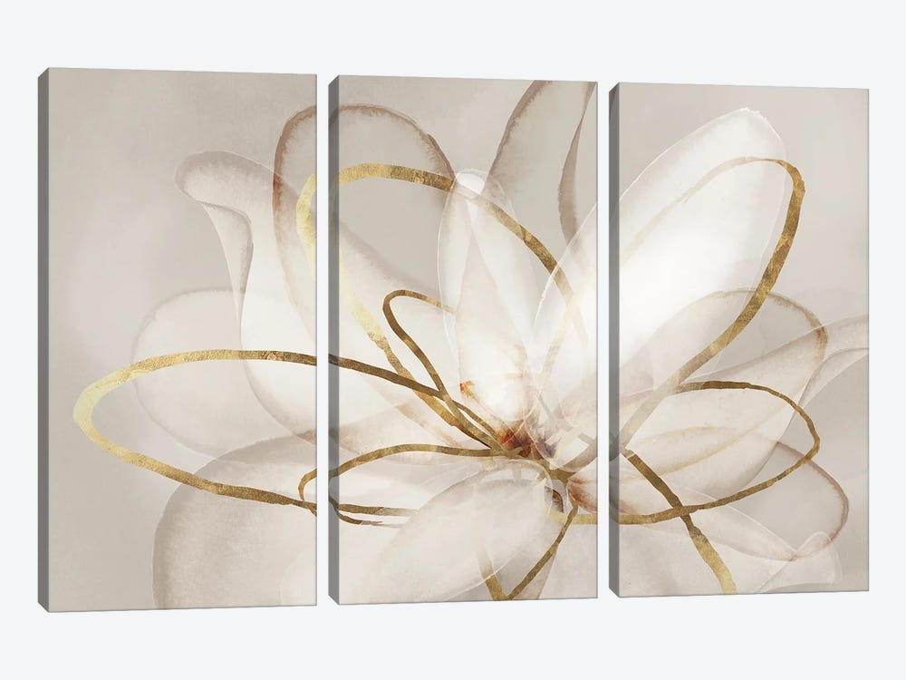 Transparent Beauty III  by Eva Watts 3-piece Art Print