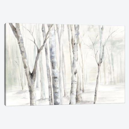 Winter is Here  Canvas Print #EWA169} by Eva Watts Canvas Artwork