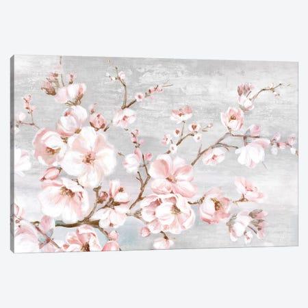 Spring Cherry Blossoms I  Canvas Print #EWA201} by Eva Watts Canvas Print