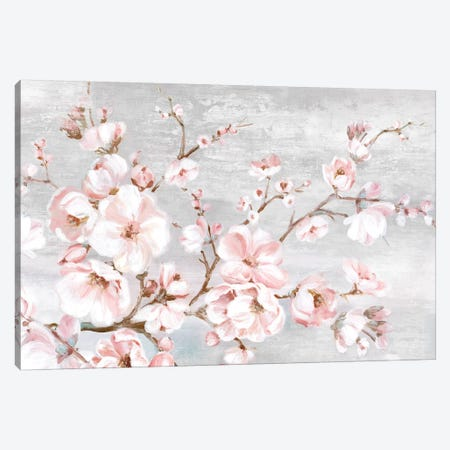Spring Cherry Blossoms I  Canvas Print #EWA201} by Eva Watts Canvas Print