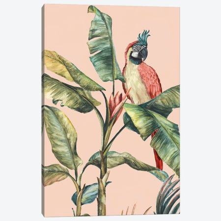 Tropicano II  Canvas Print #EWA210} by Eva Watts Canvas Wall Art
