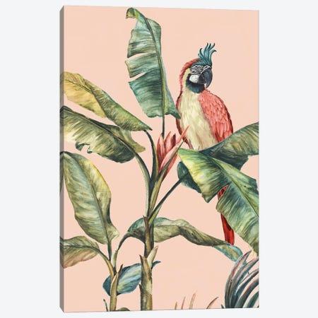 Tropicano II  Canvas Print #EWA210} by Eva Watts Canvas Wall Art