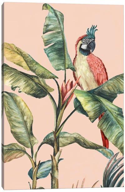 Tropicano II  Canvas Art Print