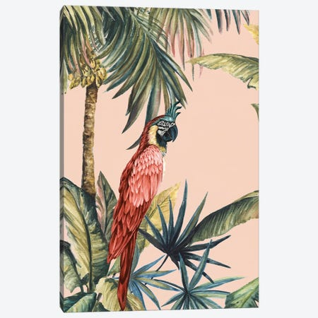 Tropicano III Canvas Print #EWA211} by Eva Watts Canvas Wall Art