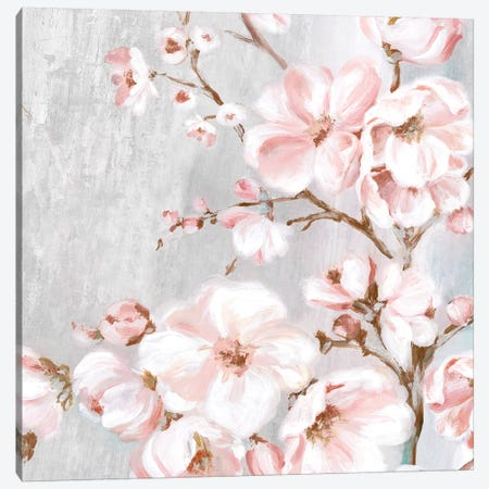 Spring Cherry Blossoms II  Canvas Print #EWA222} by Eva Watts Art Print