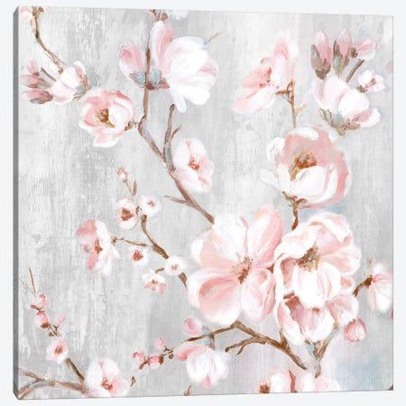 Spring Cherry Blossoms III  Canvas Print #EWA223} by Eva Watts Art Print