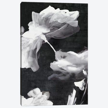 Dark Beauty II  Canvas Print #EWA237} by Eva Watts Canvas Print