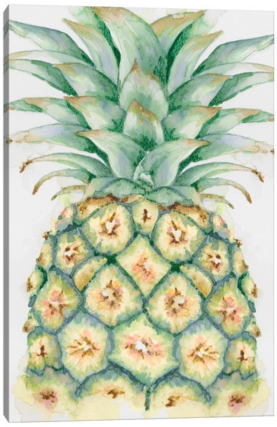 Fruit IV Canvas Art Print