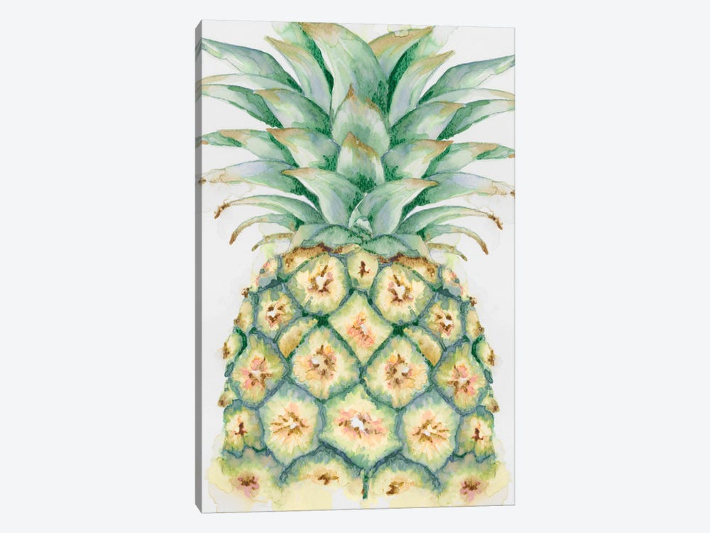 Fruit IV 1-piece Canvas Artwork