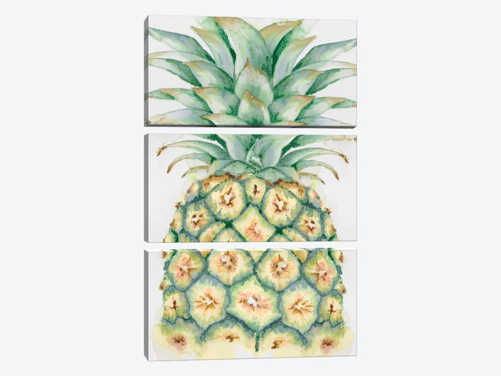 Fruit IV by Eva Watts 3-piece Canvas Art