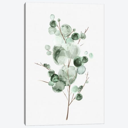 Tender Sprout I Canvas Print #EWA294} by Eva Watts Canvas Art Print