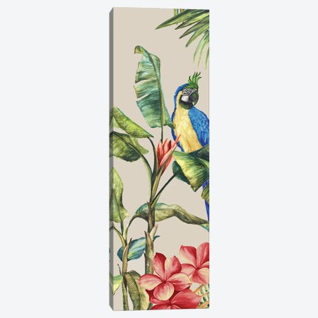 Tropicano II  Canvas Print #EWA300} by Eva Watts Canvas Art