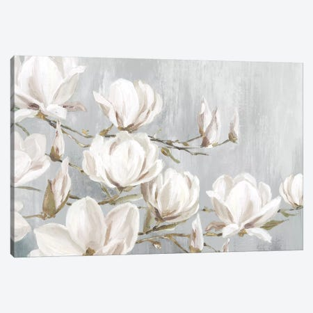 White Magnolia Canvas Print #EWA305} by Eva Watts Art Print
