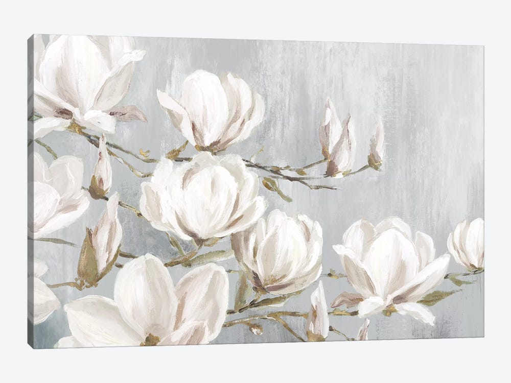 White Magnolia by Eva Watts 1-piece Canvas Wall Art