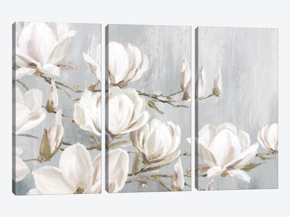 White Magnolia by Eva Watts 3-piece Canvas Artwork