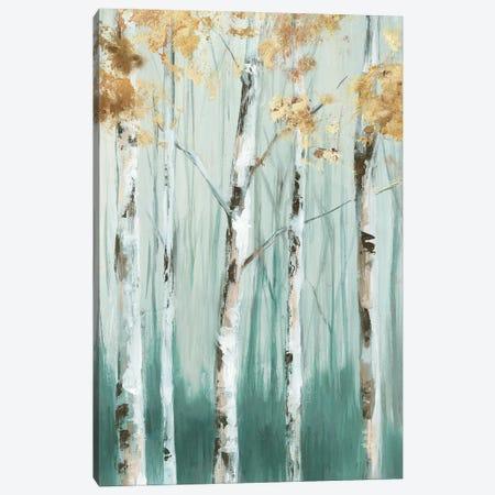 Birch Ale I Canvas Print #EWA366} by Eva Watts Canvas Art Print