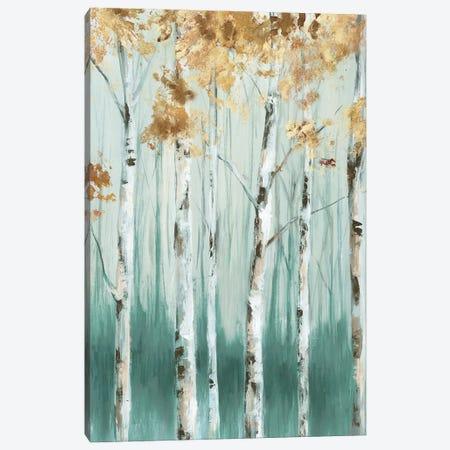 Birch Ale III Canvas Print #EWA368} by Eva Watts Canvas Wall Art