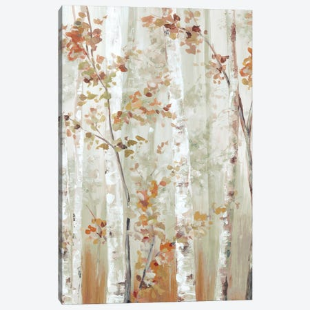 Birch Wood I Canvas Print #EWA369} by Eva Watts Canvas Art