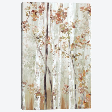 Birch Wood II Canvas Print #EWA370} by Eva Watts Art Print