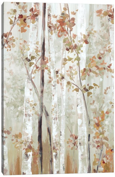 Birch Wood II Canvas Art Print