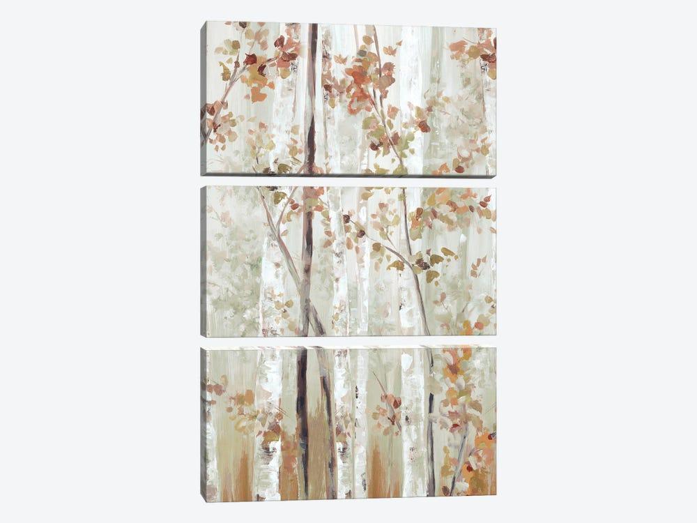 Birch Wood II by Eva Watts 3-piece Canvas Art