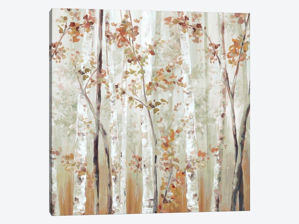 Birch Wood III by Eva Watts 1-piece Art Print