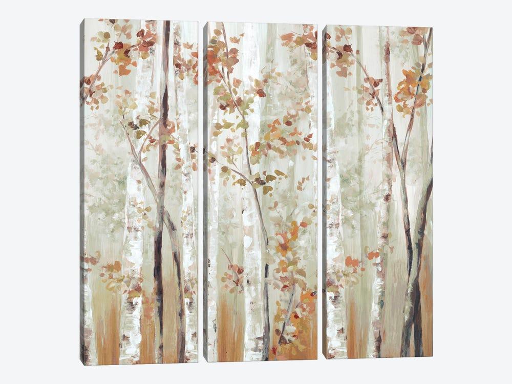 Birch Wood III by Eva Watts 3-piece Art Print