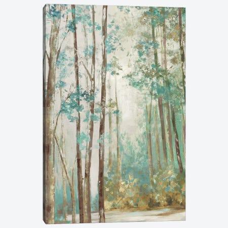 Deep Forest Canvas Print #EWA385} by Eva Watts Canvas Print