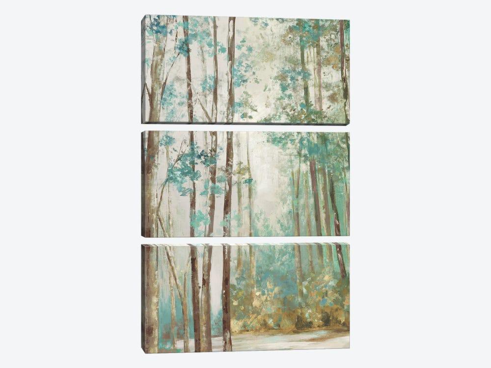 Deep Forest by Eva Watts 3-piece Canvas Art