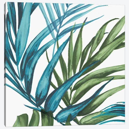 Palm Leaves II Canvas Print #EWA38} by Eva Watts Art Print