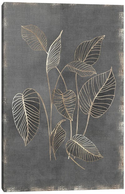 Gilded Botanical III Canvas Art Print