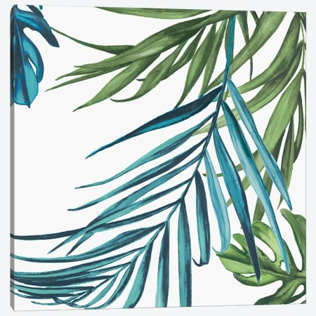 Palm Leaves III Canvas Print #EWA39} by Eva Watts Canvas Print
