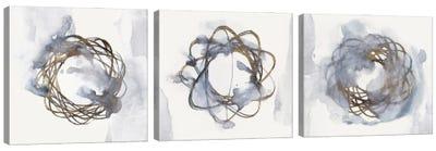 Einstein Atom Triptych Canvas Art Print