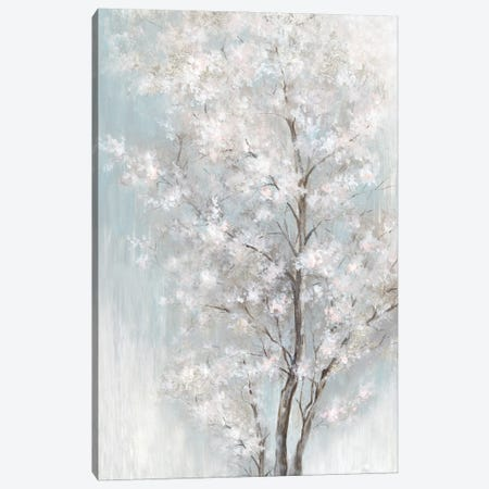 Lost In Dreams Canvas Print #EWA406} by Eva Watts Canvas Wall Art