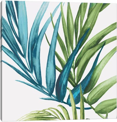 Palm Leaves IV Canvas Art Print