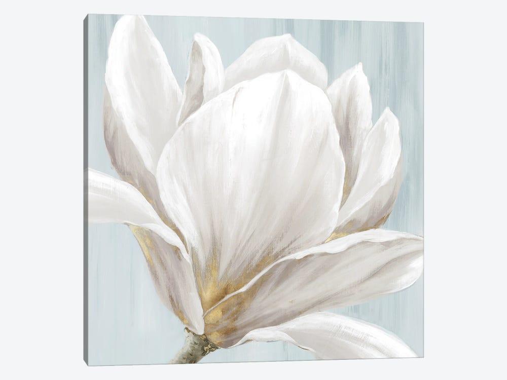 Soft White I by Eva Watts 1-piece Canvas Print
