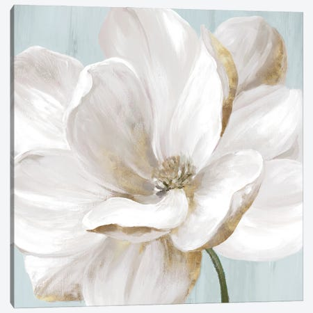Soft White II Canvas Print #EWA417} by Eva Watts Art Print