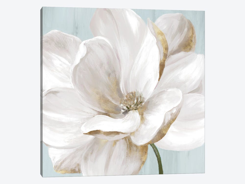 Soft White II by Eva Watts 1-piece Canvas Artwork